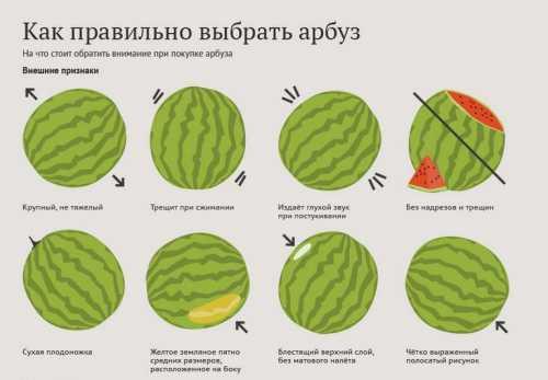 Тем не менее, из одного сорта арбузов и одной партии лучше выбирать плод средней величины не очень крупный, но и не слишком маленький