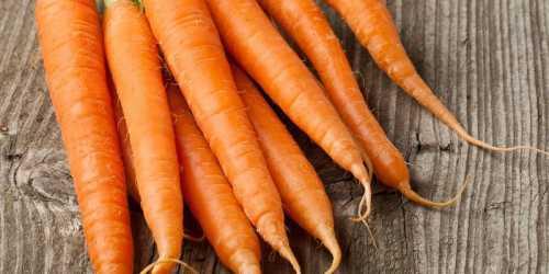 Морковная диета для быстрого похудения