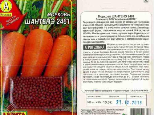 Особенности лучших сортов моркови: фото,