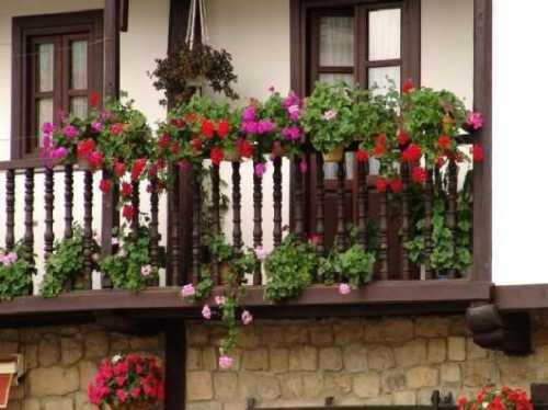 Диснейленд возле вашего дома